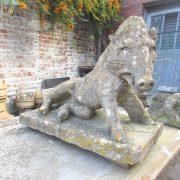 Period limestone Boar